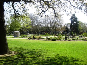 South Park Gardens, Wimbledon.  The Friends Group were instrumental in pushing for the renovation and improvement of this HLF-funded local park and continue to be actively involved in its maintenance.