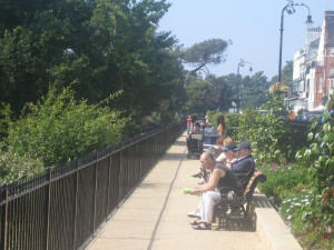 Southend Cliff Gardens. New railings, new benches, new planting and sunshine.  Heaven.